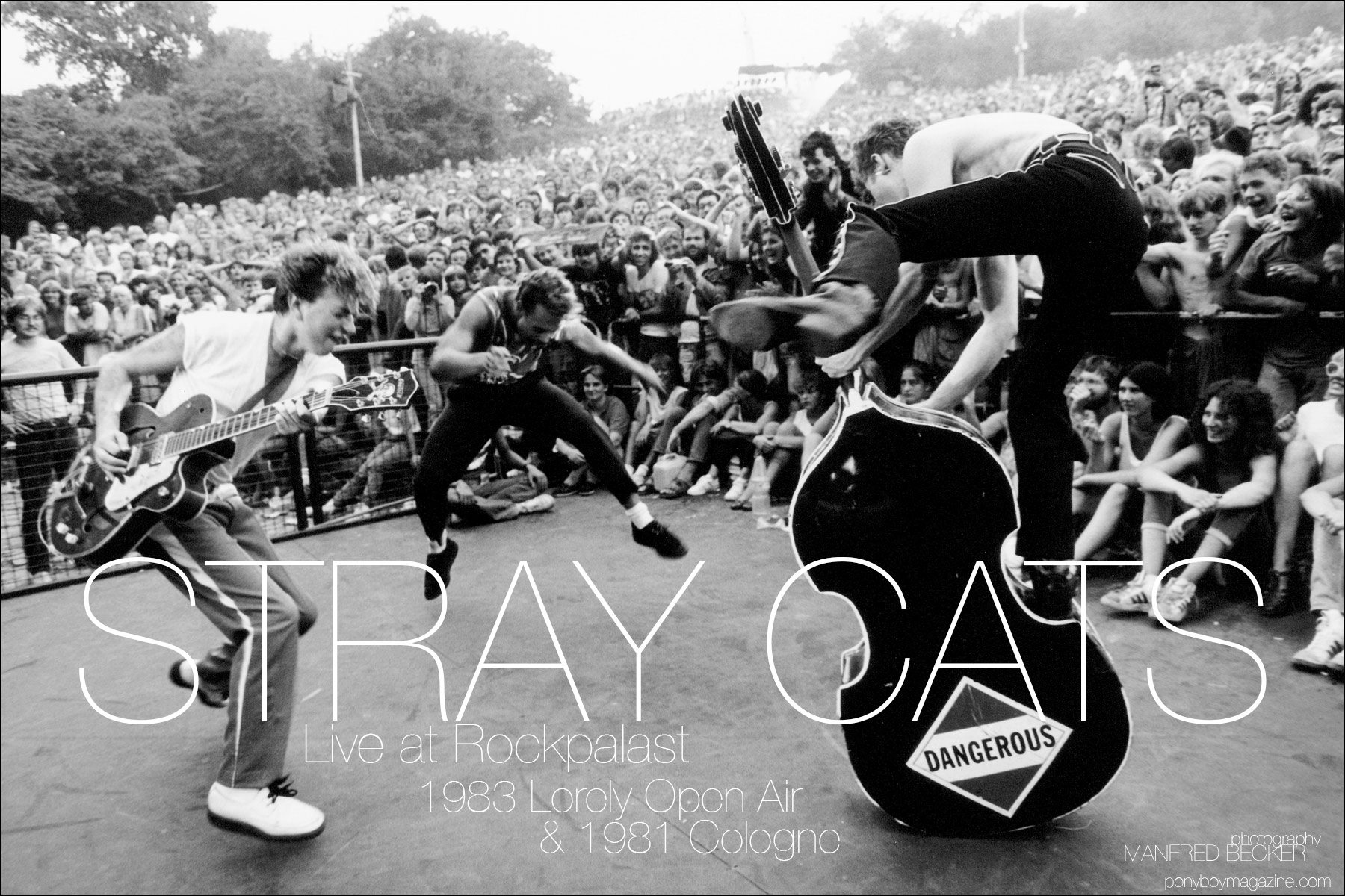 Stray Cats live at Rockpalast. Photograph by Manfred Becker. Ponyboy magazine.