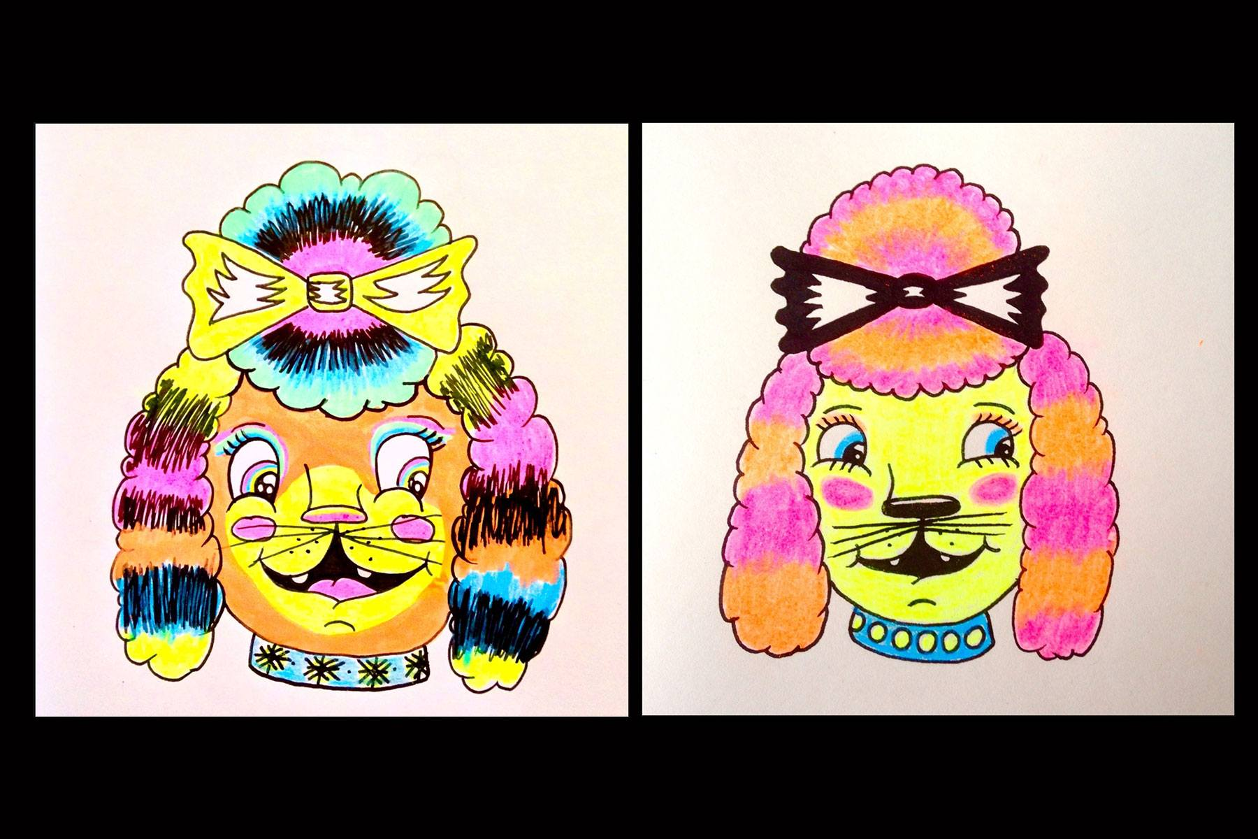 Colorful poodle drawings by the artist known as Pacolli. Ponyboy magazine.
