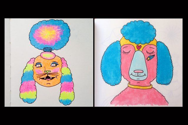 Colorful poodle drawings by artist Pacolli. Ponyboy magazine.